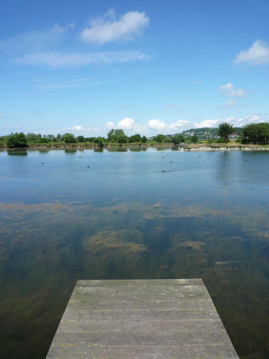 Marais de Villers_Villers-sur-Mer (1)