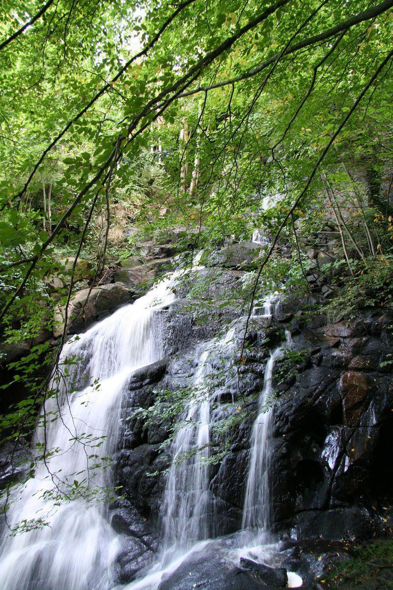 Gorges de Narvau_Lormes (1)