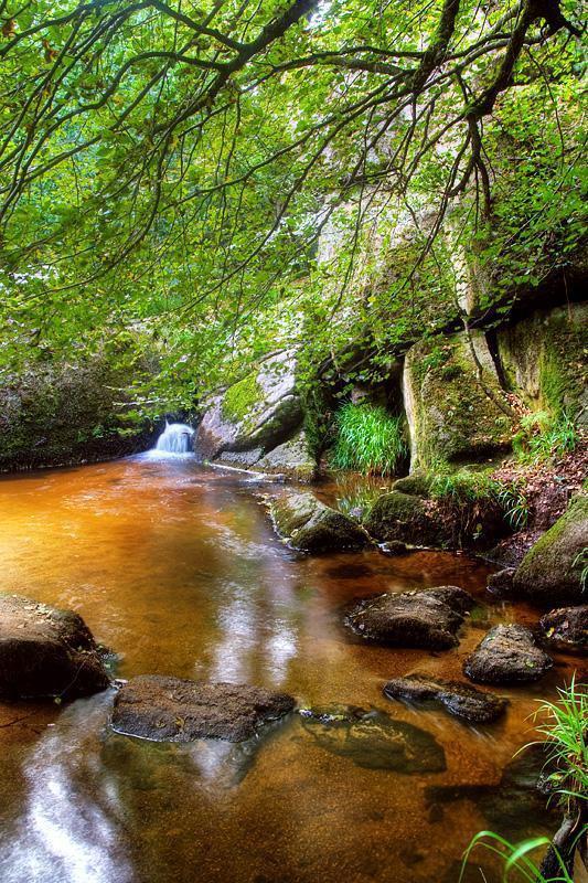 Forêt de Huelgoat_Huelgoat