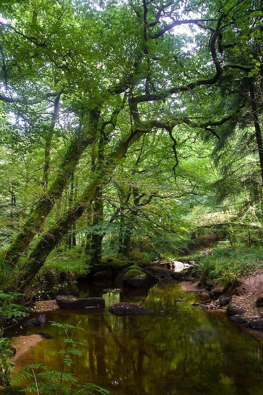 Forêt de Huelgoat_Huelgoat (1)