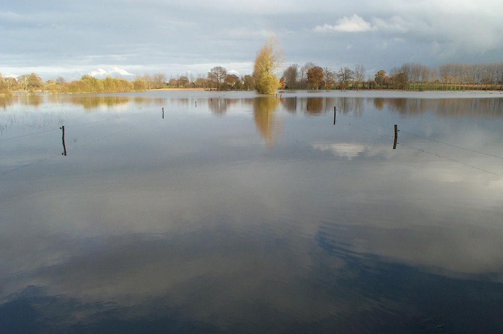 Image : Marais de Sougeal