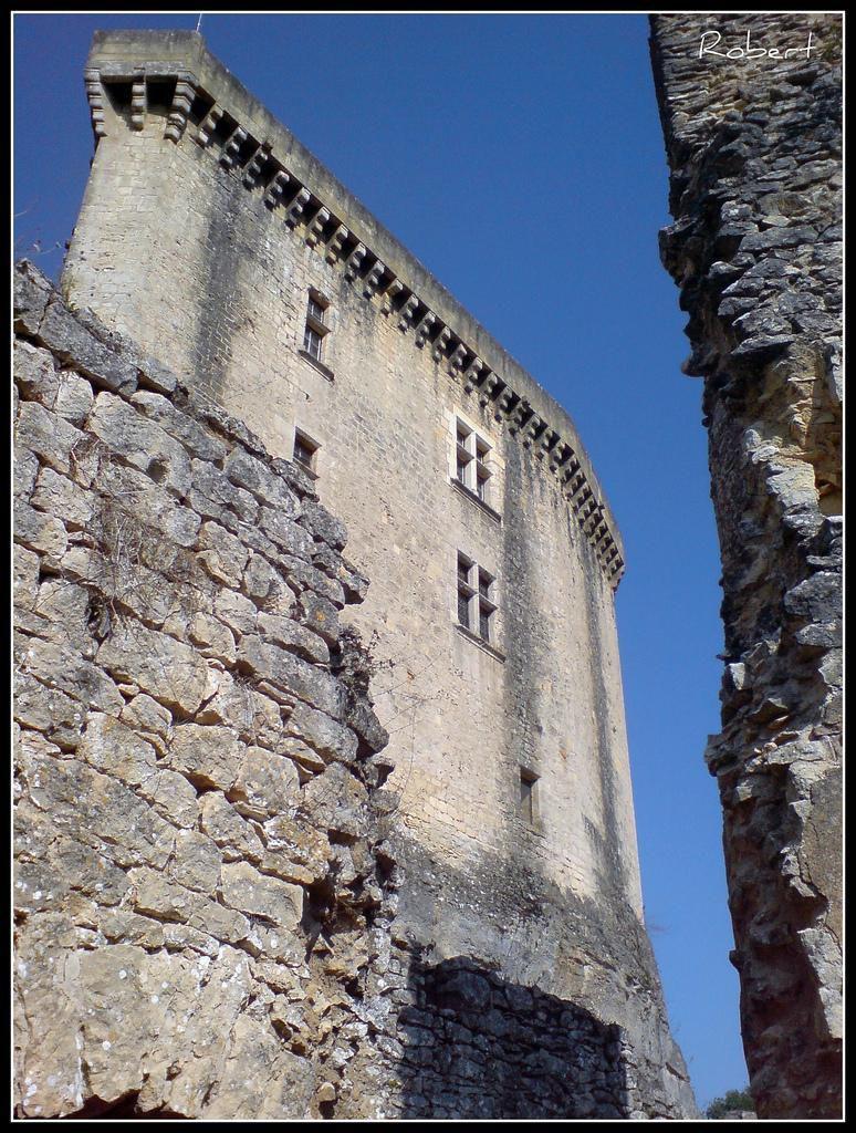 Château de Bonaguil_Saint-Front-sur-Lémance (7)