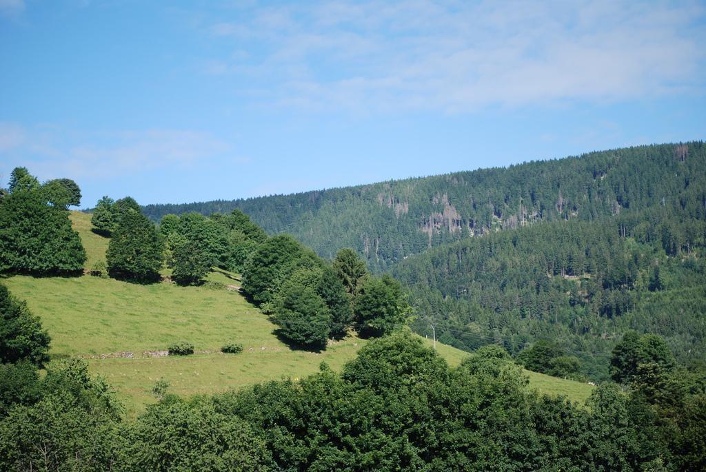 Val d'Orbey_Orbey