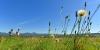 Randonnée dans les Combrailles - vue sur la Chaîne des Puys