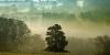Jeu de lumière extraordinaire sur le Livradois-Forez au lever du jour