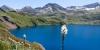 Asphodèle au Lac de Campan