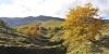 http://www.tourisme-hautes-pyrenees.com/