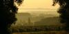 Paysage de vignes dans le Madiran