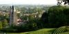 Villenauxe-la-Grande, vignoble