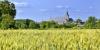 Paysage du Baugeois, Genneteil