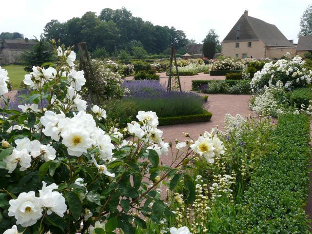 Jardins de l'abbaye 02