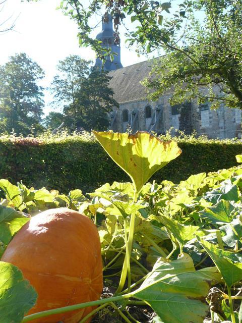 Jardins de l'Abbaye 03