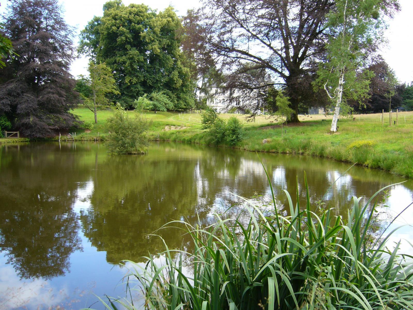 Image : Arboretum du Château de Neuvic d'Ussel