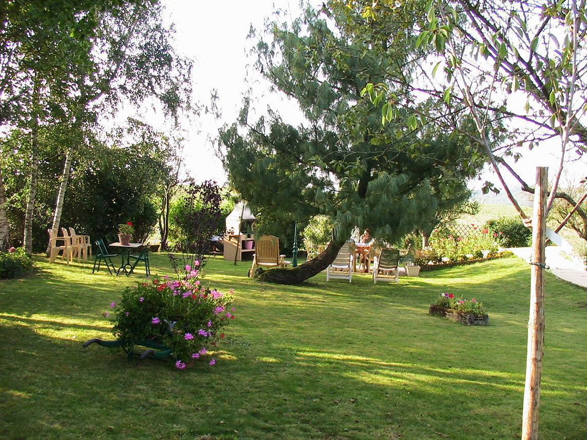 Le jardin (1)