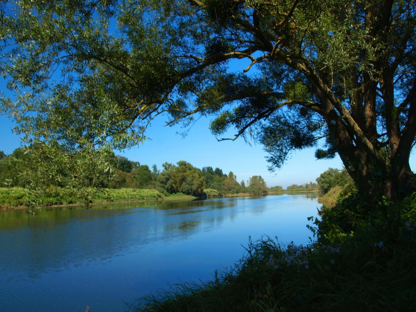 La Loire à Marcigny
