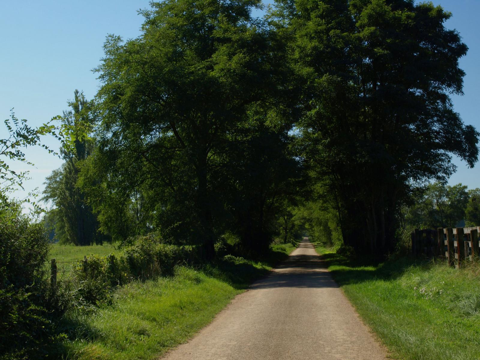 Route verte de Marcigny à St-Martin-du-Lac
