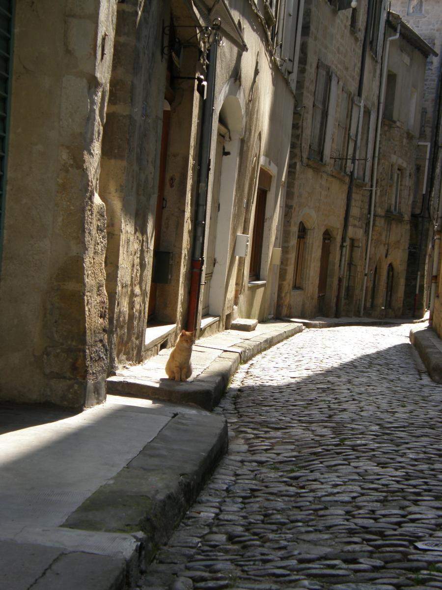 ruelle pittoresque de Largentière