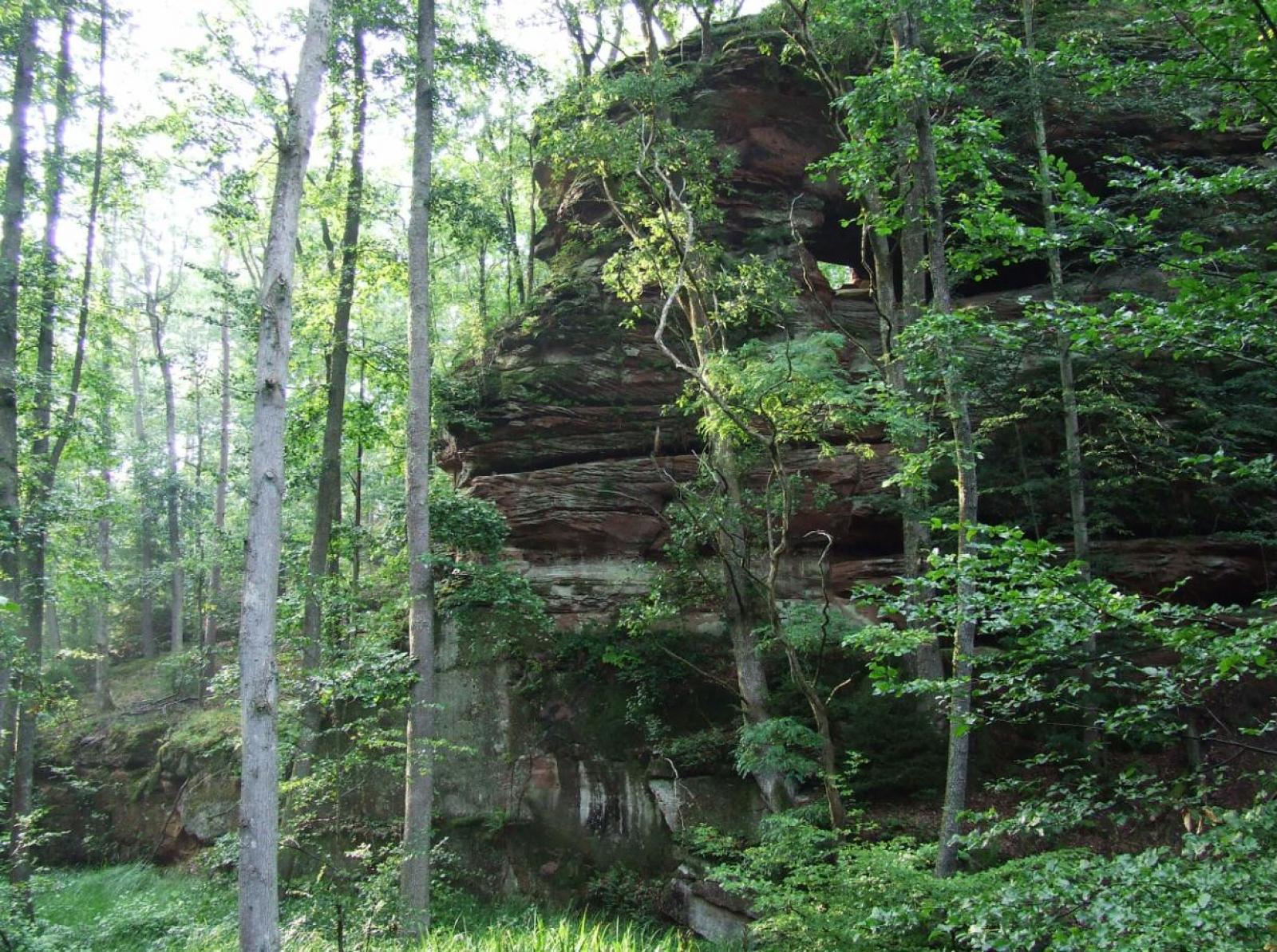 Un rocher du parc