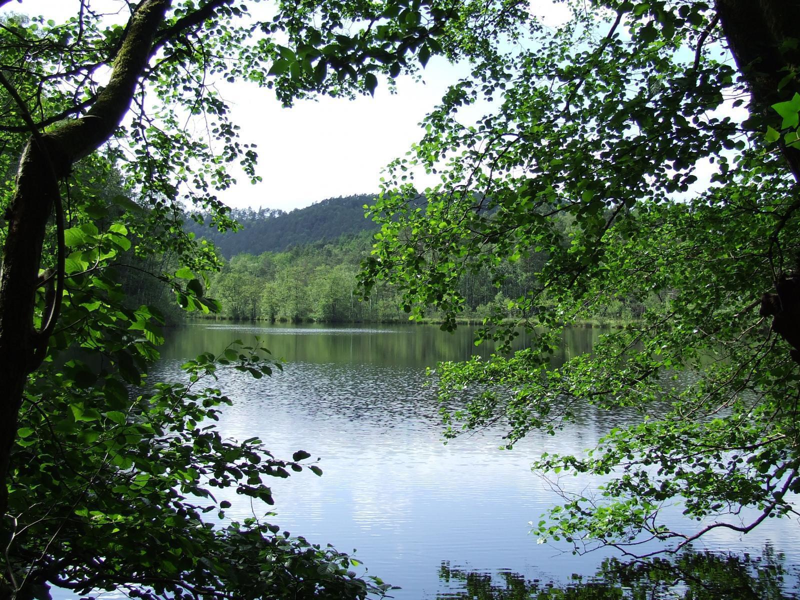 Un lac du parc