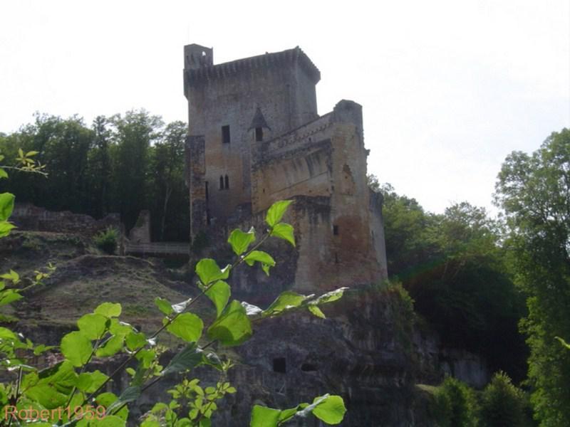 Château de Commargue1
