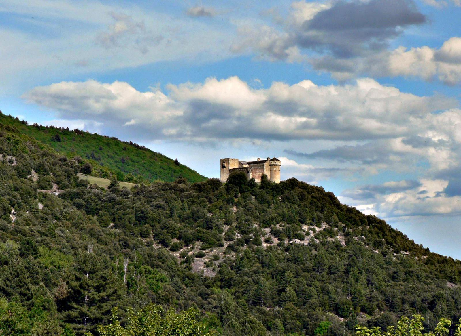 Image : Château du Cheylard d'Aujac