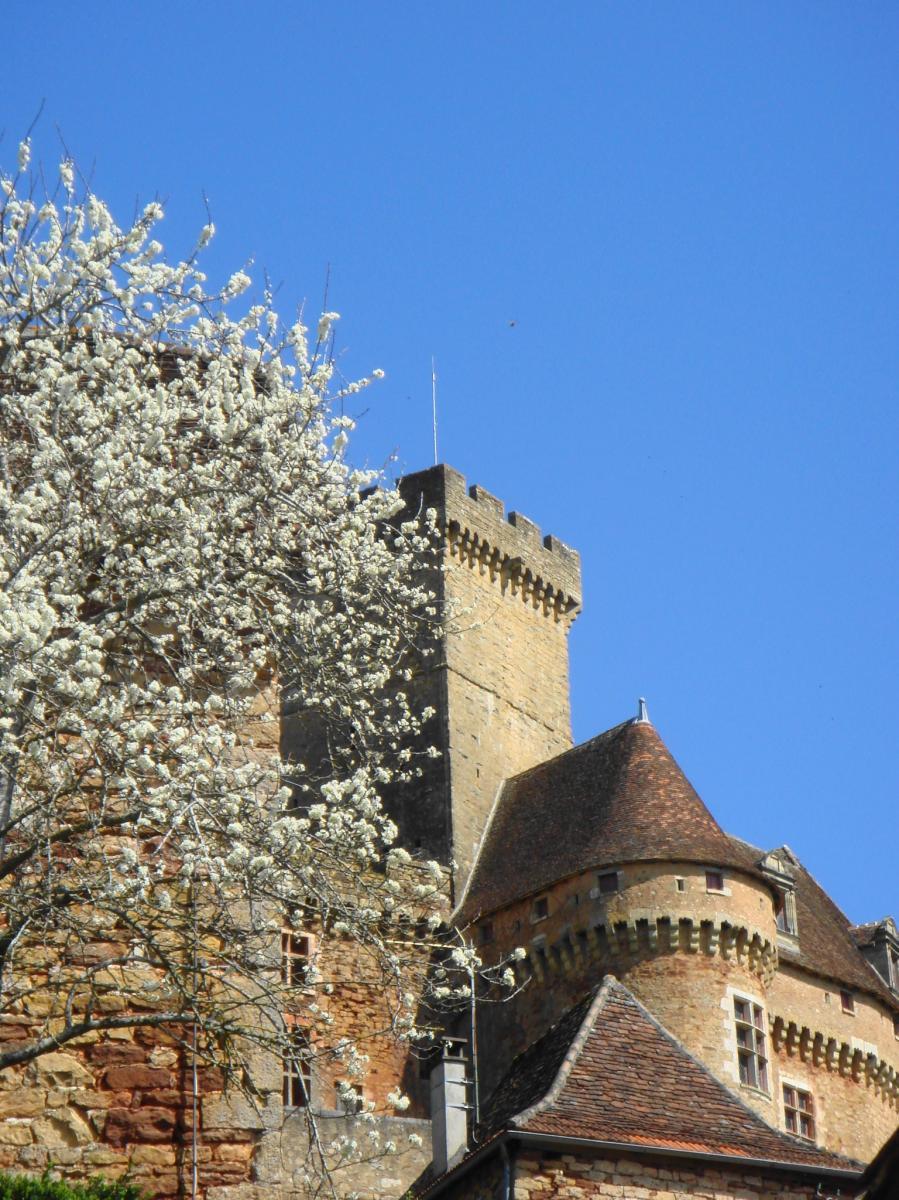 Chateau de Castelnau au printemps