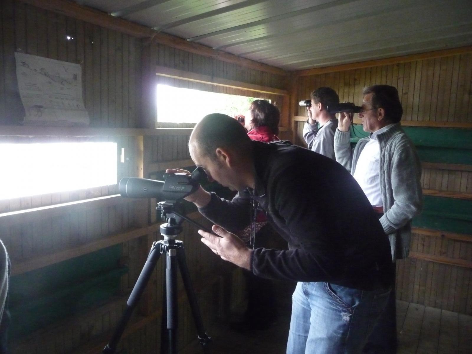 La Rincerie ornithologie